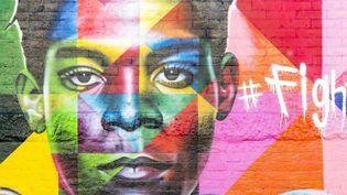 À Brooklyn, une oeuvre de l'artiste Eduardo Kobra met Jean-Michel Basquiat à l'honneur.  (MAISANT Ludovic / hemis.fr / Hemis)