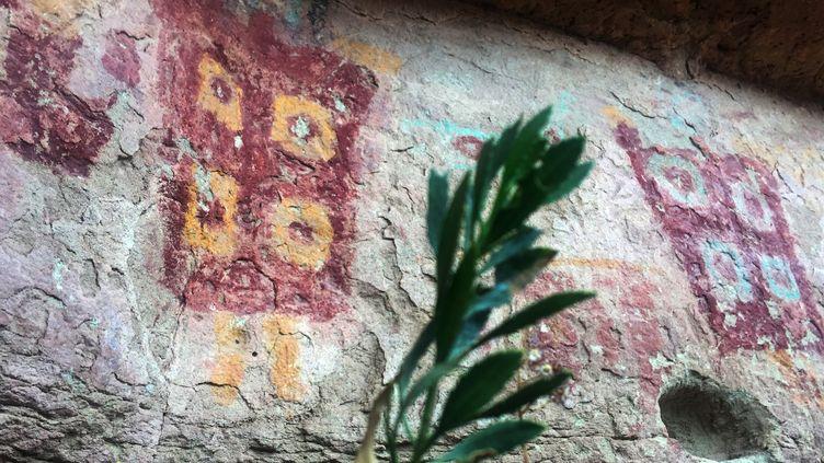 Dessins rupestres dans la vallée de Tara, datant d'il y a presque 3000 ans  (MARTIN BERNETTI / AFP)