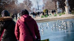 Au jardin des Tuileries, à Paris, les fontaines sont gelées, le 19 janvier 2017. (MAXPPP)
