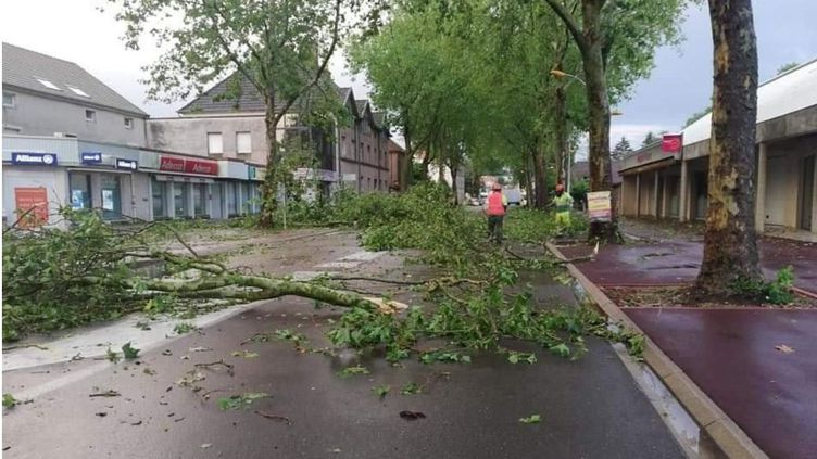 Plusieurs arbres ont été arrachés ou endommagés du fait de l'orage dans le secteur de Gray (Haute-Saône), le 20 juin 2019. (FACEBOOK METEO FRANC-COMTOISE)