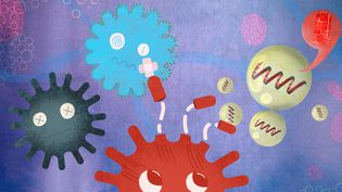 """Parmi les vaccins qui pourront bientôt être disponibles en Europe, trois utilisent l'ARN, deux autres """"piratent"""" un autre virus et le dernier met en culture une protéine. (JESSICA KOMGUEN / PIERRE-ALBERT JOSSERAND / FRANCEINFO)"""