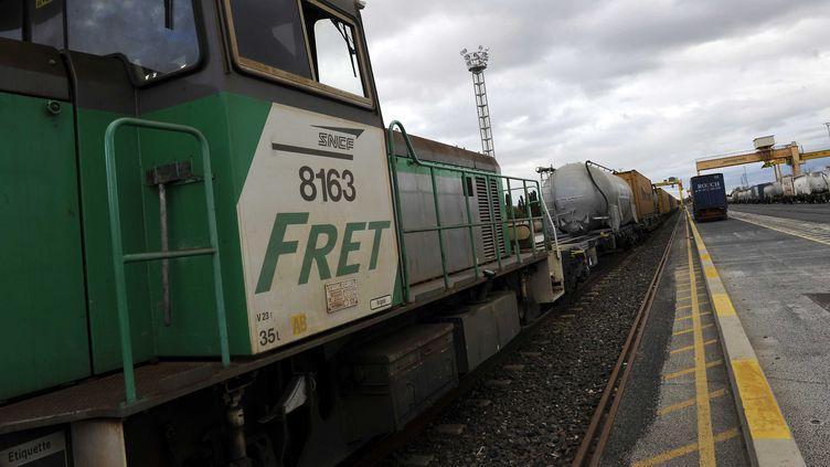 Un train de fret à la gare Saint-Charles International de Perpignan (Pyrénées-Orientales), le 30 novembre 2009. (DAMOURETTE/SIPA)