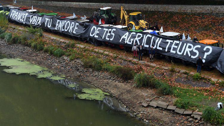 Manifestation d'agriculteurs du Maine-et-Loire à Angers le 8 octobre 2019 (JOSSELIN CLAIR / MAXPPP)