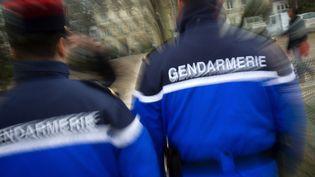 Gendarmes (photo d'illustration). (LOIC VENANCE / AFP)