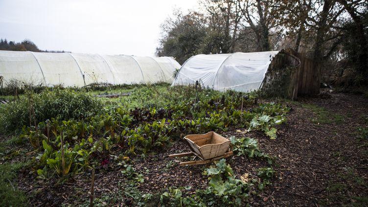 Une partie du potager de la fermede Keruzerh (Morbihan), un des éco-lieux en France. (FRANCOIS LEPAGE / HANS LUCAS via AFP)