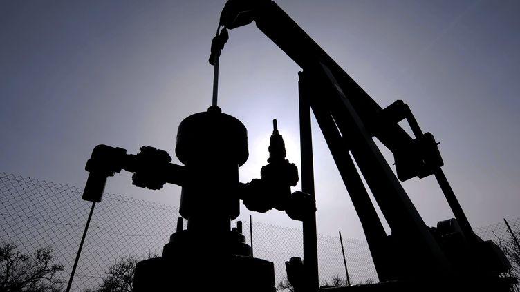 Un site d'exploitation de pétrole dans la la commune de Forcelles-Saint-Gorgon, en Meurthe-et-Mosselle (Lorraine), le 5 avril 2013. (MAXPPP)