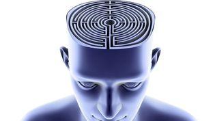 Le cerveau labyrinthe et les méandres de la mémoire  (PASIEKA / APA / Science Photo Library)