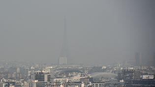 La ville de Paris lors d'un pic de pollution atmosphérique, le 18 mars 2015. (FRANCK FIFE / AFP)