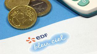 Le prix de l'électricité augmentera de 5% au 1er août 2013, puis de 5% le 1er août 2014. (CHRISTOPHE LEHENAFF / PHOTONONSTOP / AFP)