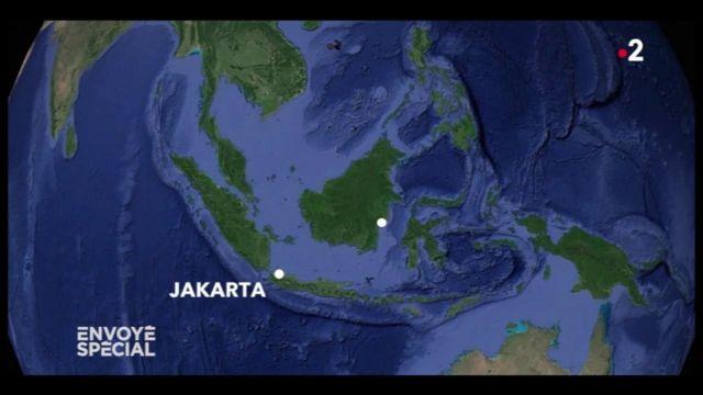 Envoyé spécial. Indonésie : Jakarta, en train de couler, va déménager à 1 000 km