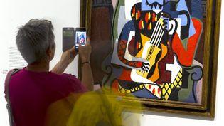 """Une autre exposition, """"Picasso - Donner à voir"""", se tient égalementau musée Fabre de Montpellier jusqu'au 23 septembre 2018. (GUILLAUME BONNEFONT / MAXPPP)"""