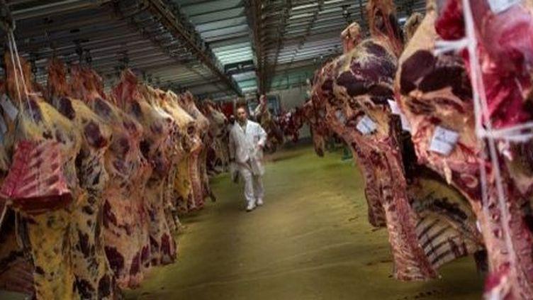 Carcasses de viande. Ici de vaches. (MARTIN BUREAU / AFP)