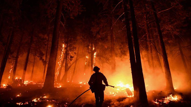 Un feu de forêt àWofford Heights (Californie), le 25 août 2021. (PATRICK T. FALLON / AFP)