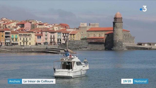 Anchois : un savoir-faire depuis des générations à Collioure