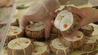 Le journal du 19/20 vous emmène dans les Alpes de Haute-Provence. Il est incontournable sur les étals de fromages : le fromage de chèvre, reconnaissable à sa feuille de châtaigner. Son origine remonterait à l'époque romaine. (FRANCE 3)