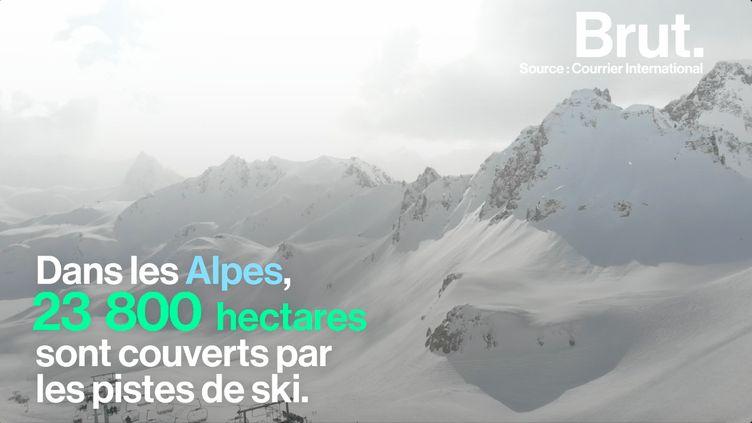 La France est une des premières destinations mondiales de ski. Pourtant cette activité est loin d'être écologique. (BRUT)
