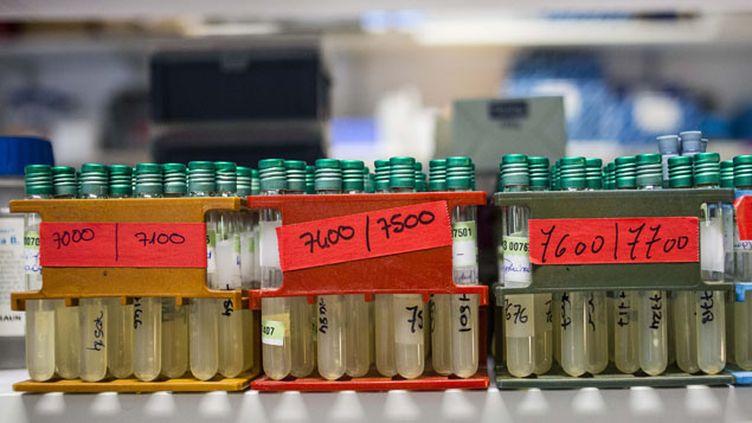 (Des chercheurs découvrent à Marseille une arme anti-bactérie (illustration matériel médical) © MaxPPP)