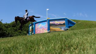 Le cavalier suisse Robin Godel sur son cheval Jet Set lors du cross country de l'épreuve du concours complet des JO de Tokyo, le 1er août 2021. Le cheval a dû être euthanasié après une mauvaise chute. (BEHROUZ MEHRI / AFP)