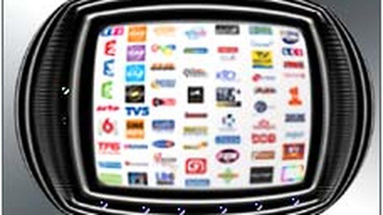 LE CSA valide le rachat de TMC et NT1 par TF1. (© France)