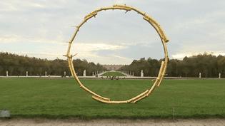 L'une des oeuvres exposée dans les jardins de Versailles  (France 3 Culturebox capture d'écran)