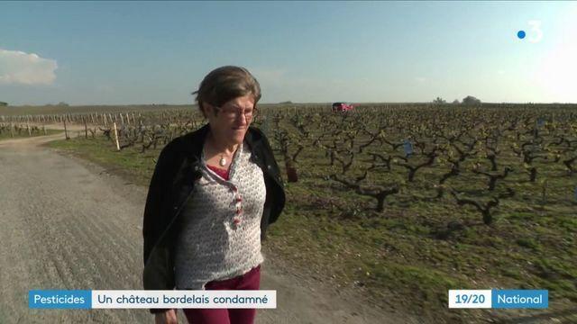 Gironde : un château bordelais condamné après l'intoxication d'une employée aux pesticides