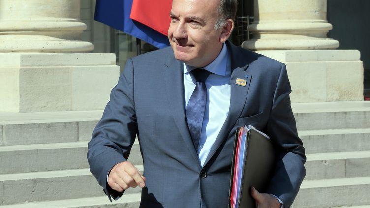 Le président du Medef, Pierre Gattaz, descend les marches de l'Elysée, le 12 juin 2014, à Paris. (JACQUES DEMARTHON / AFP)