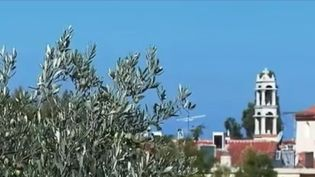 Longévité : les secrets de l'île d'Ikaria, en Grèce (FRANCE 2)