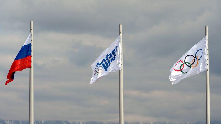 Les Jeux Olympiques de Sotchi, en Russie, en 2014