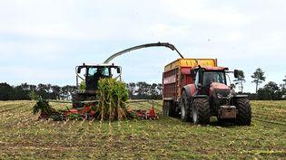 Un tracteur et une remorque dans un champ à Arzal (Morbihan). (DAMIEN MEYER / AFP)