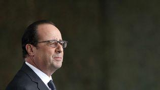 François Hollande lors d'un discours à la base d'Istres-Le Tubé (Bouches-du-Rhône), le 19 février 2015. (GUILLAUME HORCAJUELO / AFP)
