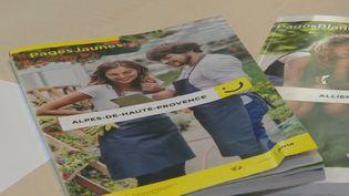 Des annuaires. (France 2)