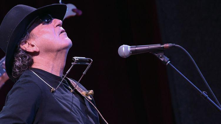 Tony Joe White en 2015  (RICK DIAMOND / GETTY IMAGES NORTH AMERICA / AFP)