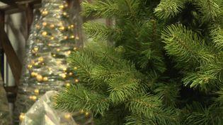 Décorer son sapin de Noël qui a été loué... le concept est écologique et économique (France 3)
