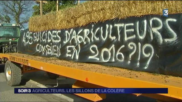 200 000 agriculteurs confrontés à une crise sans précédent