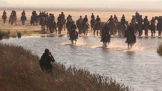 Baie de Somme :l'onirique transhumance des chevauxHenson, entre ciel et mer (FRANCE 3)