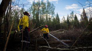 Des pompiers sud-africains tentent de maîtriser le feu deFort McMurray, au Canada, le 2 juin 2016. (TOPHER SEGUIN / REUTERS)