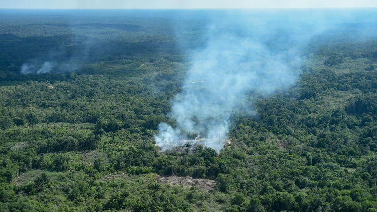 La forêt amazonienne subit plusieurs incendies, comme à Sao Gabriel de Cachoeira (Brésil), le 21 août 2019. (CHICO BATATA / DPA / AFP)