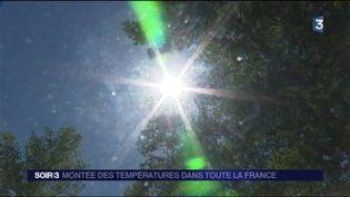 Le soleil et la chaleur sont au rendez-vous. (FRANCE 3)