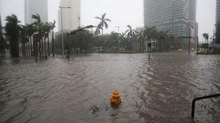 Des inondations à Miami en Floride (Etats-Unis) lors du passage de l'ouragan Irma, le 10 septembre 2017. (STEPHEN YANG / REUTERS)
