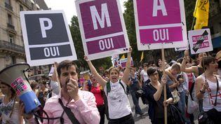 Des manifestants pro-PMA lors de la Gay Pride, le 29 juin 2013, à Paris. (LIONEL BONAVENTURE / AFP)