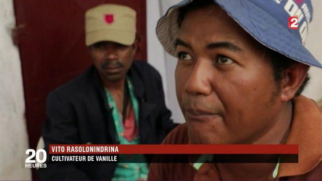 Madagascar : ruée sur la vanille