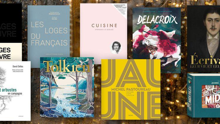 Couvertures des neuf beaux livres à offrir à Noël (FRANCEINFO)