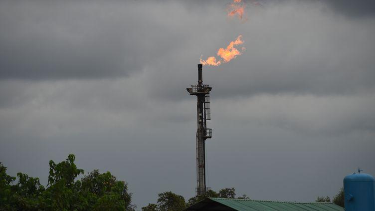 Une torchère brûlesur le puits de pétrole de Batan exploité par Chevron et par laNigerian National Petroleum Corporation (NNPC). Le 26 mars 2018. (PIUS UTOMI EKPEI / AFP)