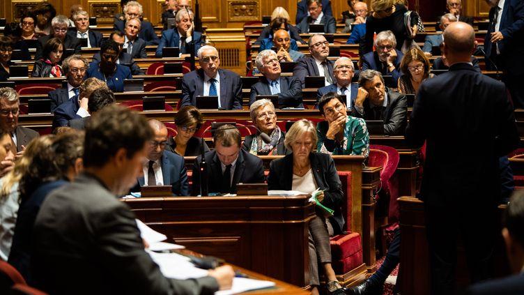 L'hémicycle du Sénat lors d'une séance de questions au gouvernement, le 16 octobre 2019. (XOSE BOUZAS / AFP)