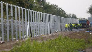 Les détenus finissent la clôture le long de la frontière hongroise avec la Serbie, près deRoszke (Hongrie), le 10 septembre 2015. (LASZLO BALOGH / REUTERS)