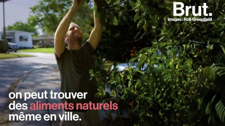 """VIDEO. """"La nature a été mon garde-manger et ma pharmacie"""" : il se nourrit uniquement de ce qu'il trouve dans son jardin (BRUT)"""
