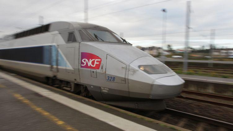 Un TGV passe en gare de Vannes (Morbihan), le 15 février 2012. (FRANCOIS DESTOC / MAXPPP)