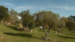 """""""Les Jardins de Mémoire"""", un site cinéraire unique en France (FRANCE 2)"""