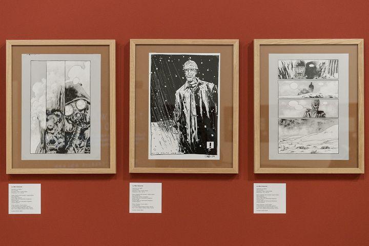 """Quelques planches issues de """"La mort blanche"""" de Charlie Adlard présentées au Musée d'art contemporain de Lyon (MAXIME JEGAT / MAXPPP)"""