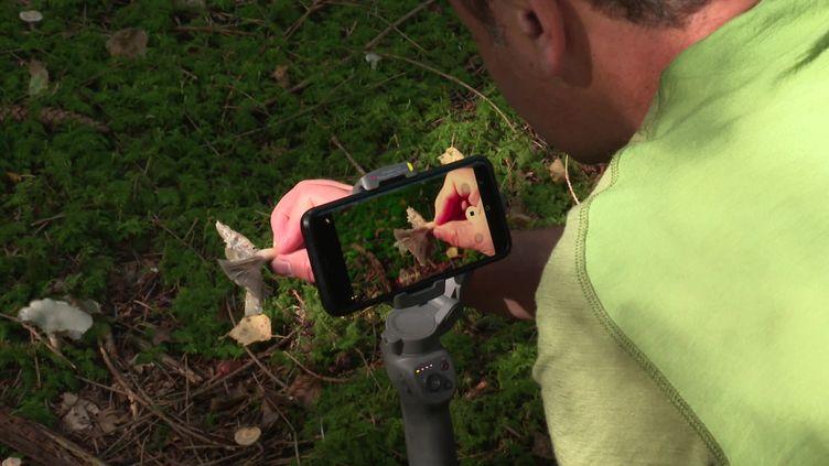 Dan, le youtubeur mycologue alsacien. (CAPTURE D'ÉCRAN FRANCE 3)